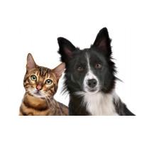 Товары для кошек и собак