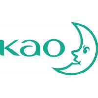 Kao (Japan)